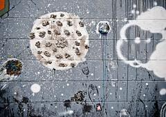 MTL_PLATEAU-42 (Ronald Santerre) Tags: urban streetart canada art quebec plateau montreal wallart urbanart artmural urbain graffitis arturbain plateaumtroyal ronaldsanterre montrealurbanartgraffitis