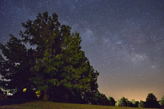 The MIlky Way (Jeff Rose Photography) Tags: usa tree nature silhouette horizontal mystery night stars outside outdoors photography star space nopeople idaho galaxy astronomy arkansas majestic discovery singletree scenics milkyway colorimage beautyinnature themilkyway jekaworldphotography jeffrosephotography kalitharosephotography