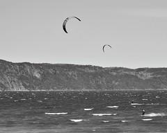 Playing with the wind. (Ji-) Tags: blackandwhite canada vent nikon wind noiretblanc qubec fjord kitesurf saguenay labaie d5100 nikon55300mmf4556g