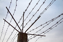 Breendonk, Barbed Wire (margatt2012) Tags: danger nazi prison barbedwire ww2 prisoner breendonk