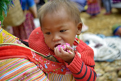 H'Mong Child's Face ... (Michaelhuy) Tags: street old travel wedding people urban dog film nature water car sport architecture cat sunrise canon lights hotel photo nikon vietnamese fuji underwater pentax young motel vietnam human transportation lanscape journalism uncategorized lightings vietnamphoto michaelhuy carlzeir