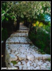 Escalera Magica   Efecto Orton (tarod26) Tags: paisaje salidas efectoorton castelldalaro salidasfotograficas