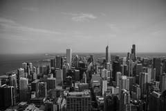 Chicago Skyline (Matthewjs007) Tags: city blackandwhite white chicago black tower beautiful skyline skyscraper skyscrapers lakemichigan scape illanois