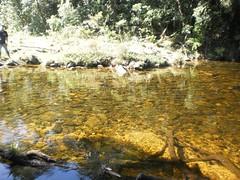 523396_558518707538046_1159949571_n (rodneisdourado) Tags: brasil l paulo serra terra floresta ceu caminhada pedra so mata cacheira mogibertioga