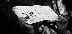 -¿QUÉ CULPA TENEMOS NOSOTROS? (Vampyyri.Lauri) Tags: dog laura dogs valparaiso gente pueblo protesta perros carteles manifestacion perritos marcha municipalidad matanza pancartas quilpue tudela doglovers liberacionanimal animalistas quilpueinos lauratudela