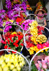 Flower seller - Cho Ben Thanh (lyon photography) Tags: flowers colour work market vietnam hidden saigon hochiminh flowerseller