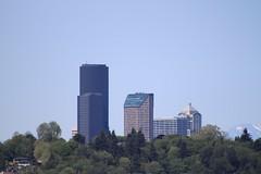 Seattle skyline from Aubrey Davis Park (SounderBruce) Tags: seattle skyline seattlemunicipaltower columbiacenter 1201thirdavenue aubreydavispark