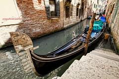 Venezia (Pachibro Portfolio) Tags: venice canon eos boat barca 7d gondola venezia rialto sanmarco veneto canalgrande gondoliere canoneos7d scattifotografici pasqualinobrodella pachibroportfolio pachibro