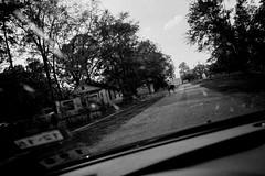 Eco-Friendly Transport (David's_silvershots) Tags: road travel horse usa roadtrip gr ricoh