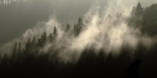 Haze after a shower