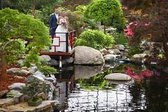Wedding (siebe ) Tags: wedding holland love netherlands dutch garden groom bride scenery couple marriage tuin trouwen 2015 bruidspaar bruid trouwfoto naaldwijk watertuin trouwreportage bruidsfoto siebebaardafotografie wwweenfotograafgezochtnl