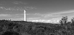 Split Point Lighthouse (Darcy Richardson) Tags: split point lighthouse aireysinlet victoria roadtrip travel black white bw monochrome coast greatoceanroad canon 50d