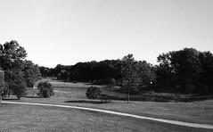 (halimshah92) Tags: nature park sky horizon winnipeg manitoba canada summer blackwhite bw monochrome analog film ilford fp4 olympus om1 zuiko pond