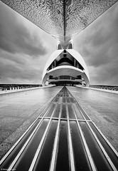 Valencia Palau de las Arts Reina Sofia b&w (rainerneumann831) Tags: architektur blackwhite linien palaudelasartsreinasofia valencia