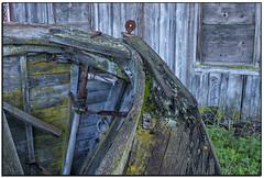 _DSC5925-aa (tellytomtelly) Tags: semiahmoo washington boat woodboat woodenboat