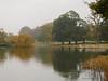 Autum mist (2) (yvonnepay615) Tags: panasonic lumix gh4 nature autumn mist reflections holkham norfolk eastanglia uk coth