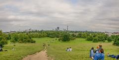 Primrose Hill panorama (stevefge) Tags: london uk people candid panorama landscape green city skyline reflectyourworld