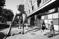 Madrid. 2016. (Jose_Prez) Tags: madrid street streetphoto urban viaje maletas rana pareja blackandwhite blancoynegro byn bw