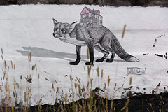 Urban wild life (michael_hamburg69) Tags: reykjavk iceland island reykjavkurborg hfuborgarsvi veggjakrot urbanart streetart fuchs haus fox house wildwelva urbanwildlife animal themed urbanjungle wheatpaste