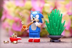 Gotta get those rings (Frost Bricks) Tags: lego sonic hedgehog jazz saxophone