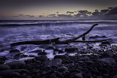 Driftwood (Red King (Rory)) Tags: beach sea seascape rocks ocean driftwood sunset telpyn amroth pembrokeshire wales