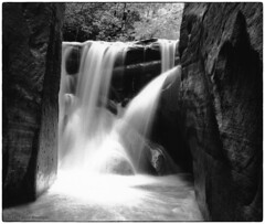 Don't worry, there's an easy route around this one 1975 (Fogle Images) Tags: landscape canyonwalking waterfall longexposure 6x6pool eastforkvirginriver narrows zionnationalpark coloradoplateau utah