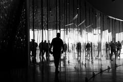 Reflexos / Reflections (Francisco (PortoPortugal)) Tags: 2412016 20160917fpbo3985 pb nb bw pessoas people luz light sombra shadow interiores indoors matosinhos porto portugal portografiaassociaofotogrficadoporto franciscooliveira