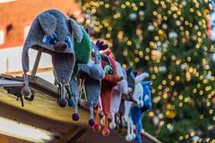 Funny Hats (AudioClassic) Tags: hats souvenirs christmas december market christmastree christmasdecoration holydays estonia