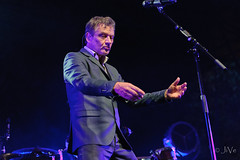 Bart Peeters-9 (JiVePics) Tags: 2015 concert olt