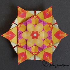 Iimori Astra E (Day 35) (Yureiko) Tags: yureiko tessellation papierfalten papier origami paperfolding paper