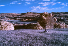 Infrared Land (Athrandel) Tags: land landscape landscapes nature green tree trees sky skies cloud clouds infra infrared ir colour colours colors colorful dramatic mood field fields