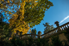 angular visibility (zoomseb) Tags: autum herbst bunte bltter leaves color yellow sunny park potsdam sansoucci brcke bridge angular visibility