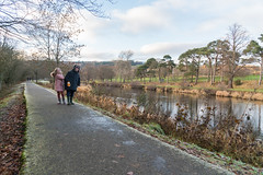 Peebles-16120434 (Our Dream Photography (Personal)) Tags: autumn countryside haylodgepark leelive neidpathcastle ourdreamphotography peebles river rivertweed scottishborders tweeddale walk winter woodland gutterbluid wwwourdreamphotographycom