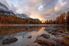 Frozen fall (Daniele Bisognin) Tags: alps colors dolomites lake sky snow wood autumn blue clouds fall forest larch mountain orange peaks rocks sunset trees yellow
