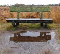 Neem plaats/ Take a seat (truus1949) Tags: wandelen regen waterplassen bank herfst reflectie