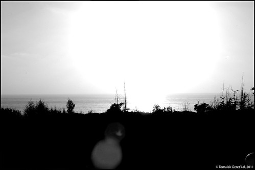 DSC_7175[dust][border+caption2][bw][contrast][half]