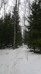 Snowy path through trees (hugovk) Tags: cameraphone trees winter snow tree suomi finland island march nokia spring helsinki snowy path through helsingfors hvk talvi n8 2012 seurasaari carlzeiss uusimaa kevt nyland southernfinland n800 nokian800 hugovk geo:country=finland camera:Make=nokia nokian8 uusima exif:Focal_Length=59mm snowypaththroughtrees exif:Flash=autodidnotfire exif:Aperture=28 exif:ISO_Speed=105 camera:Model=n800 exif:Orientation=horizontalnormal uudenmaanmaakunta geo:locality=helsinki geo:county=uudenmaanmaakunta geo:region=southernfinland exif:Exposure=1261 geo:neighbourhood=seurasaari meta:exif=1363868459