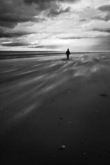 Sous le souffle d'Eole (Ludovic Cadet Photo) Tags: blackandwhite bw beach canon vent person sand wind noiretblanc sable sigma nb plage