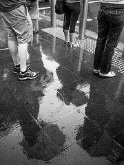 Wet Trio (HaIogen) Tags: street people wet rain umbrella reflections blackwhite olympus panasonic orchardroad microfourthirds waveletsharpen 14mmf25 omdem5