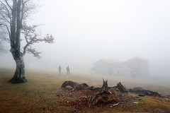 Morning hiking in the mountain with fog (Mimadeo) Tags: morning house mist tree wet sport misty fog mystery trekking trek walking haze cabin mood hiking walk foggy hike adventure mysterious ligth hiker activity hazy shelter beech mountaineer