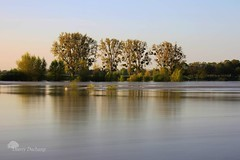 Le temps d'une pose (photosenvrac) Tags: pose photo eau centre loire arbre fleuve fil poselongue thierryduchamp
