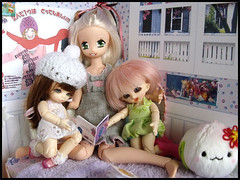 #19 (MarieMako) Tags: doll bjd fairyland pipi dollhouse pongpong azone pureneemo rements excute pukipuki diorame