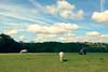 chomp! (AppleCrypt) Tags: england horses rural landscape countryside sthelens iphone merseyside carrmill iphone5 applecrypt