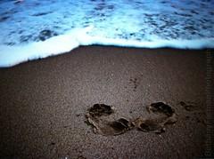 Printed (bforman40) Tags: ocean california santa beach water canon photography sand waves footprints cruz conceptual
