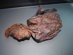 Ginger (Vurnman) Tags: ireland dublin ginger human preserved bog remains nationalmuseum bodies mutilated clonycavanman