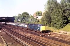 77 085 010677 York Holgate 55012 (The KDH archive) Tags: york railway 1977 deltic class55 55012 d9012