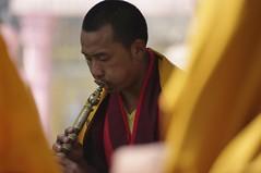 Bhutanese shawm player (Andrea Kirkby) Tags: india bhutan religion buddhism bodhgaya shawm