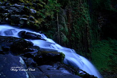 021 (Photos by Wesley Edward Clark) Tags: oregon silverton waterfalls scottsmills abiquacreek abiquafalls