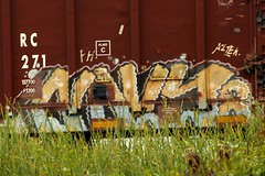 Graffiti Train 024 (chariothouse) Tags: cleveland graffititrain benched freightwriters