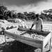 """Gente do Parque Estadual. Marcos coleta musgos para venda. Eles servem para trabalho funerário. • <a style=""""font-size:0.8em;"""" href=""""http://www.flickr.com/photos/39546249@N07/9702623509/"""" target=""""_blank"""">View on Flickr</a>"""